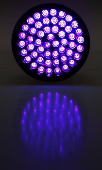 LED-Taschenlampe mit 51 UV LEDs